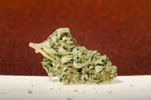 An indica dominate marijuana strain.