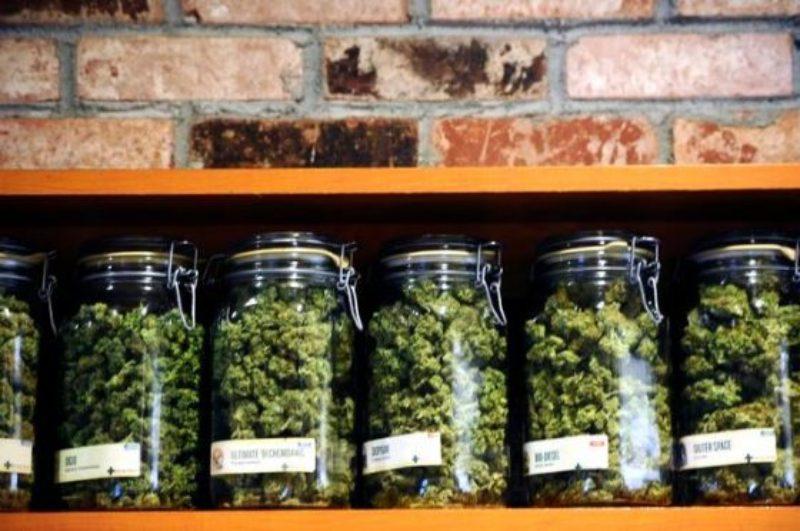 20160514__marijuanap1-1-560x372
