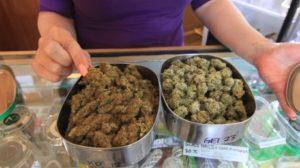 canada-marijuana-regulations