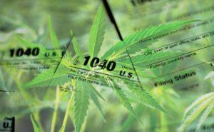 cannabist_09212016_converted-WP-560x347