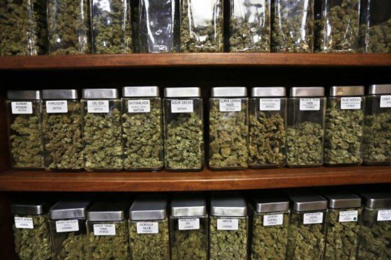 marijuana-editorial-1-560x373