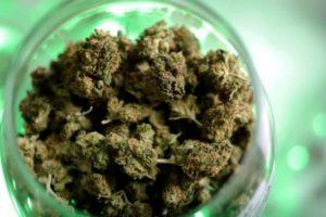oregon-marijuana-sales-800x534-560x374
