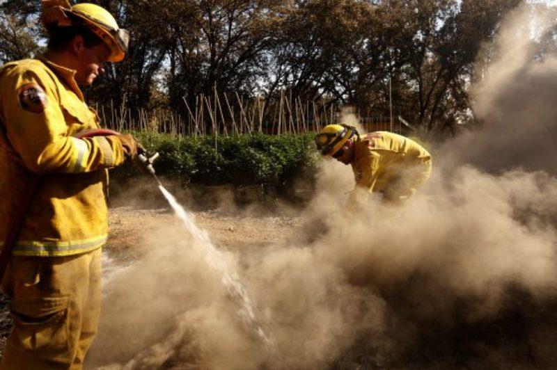 US_NEWS_CALIF-WILDFIRES-MARIJUANA_2_LA-560x373