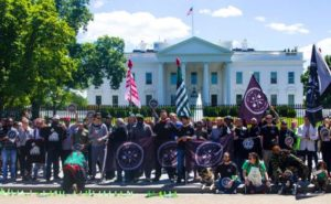 Weed-for-Warriors-Project-Protest-2017-washington-DC-560x347