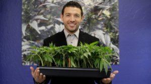 california-marijuana-khalil-moutawakkil-kindpeoples