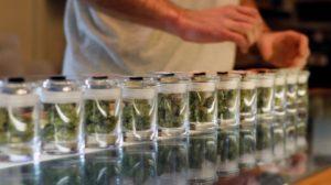 marijuana-dispensary