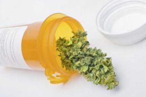 20131218_070927_Medical-Marijuana1-560x373