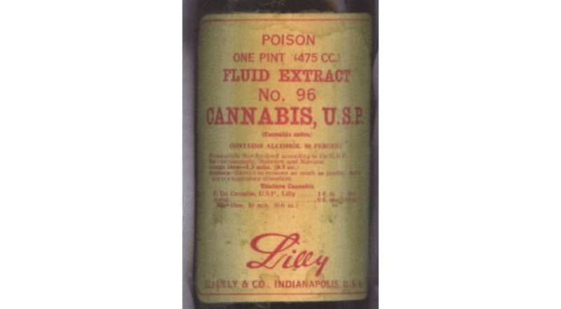 Eli-Lilly-Co-Cannabis-medicine-560x309