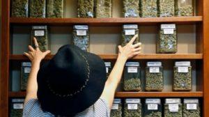 cannabis-dispensaries