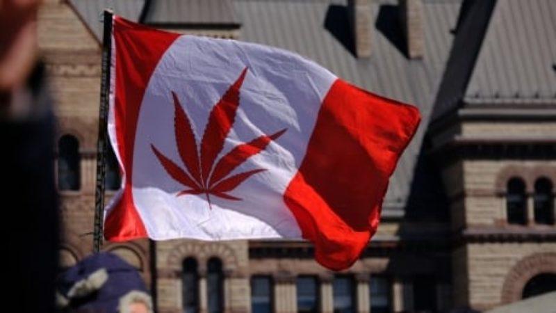 420-toronto-nathan-phillips-square-2018-cannabis-flag