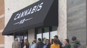 cannabis-nb
