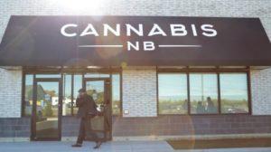 cannabis-outside