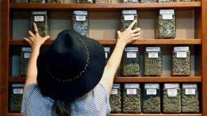 welcoming-pot-shops