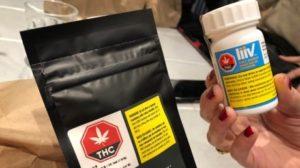 easy-cheesy-cannabis-marijuana-nova-scotia-nslc