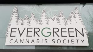evergreen-cannabis-store