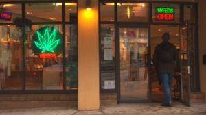 weeds-store-vancouver