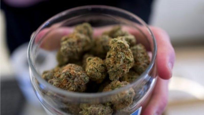 marijuana-legislation