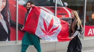 legal-marijuana-banner-year